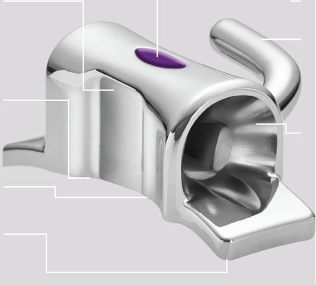 Структура щічної трубки Maestro